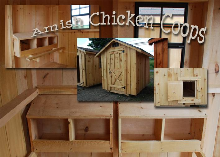 Chickens Free Range Organic Honey Bees And Other